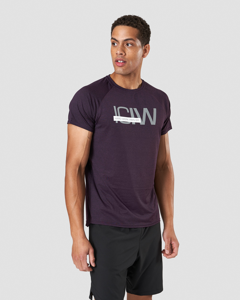 Training Mesh T-shirt Purple Melange Men